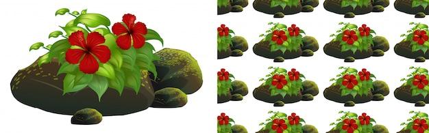 Nahtloses hintergrunddesign mit roten hibiscusblumen auf moossteinen Kostenlosen Vektoren