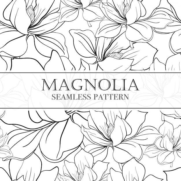 Nahtloses lineares muster mit blumen magnolien. Premium Vektoren