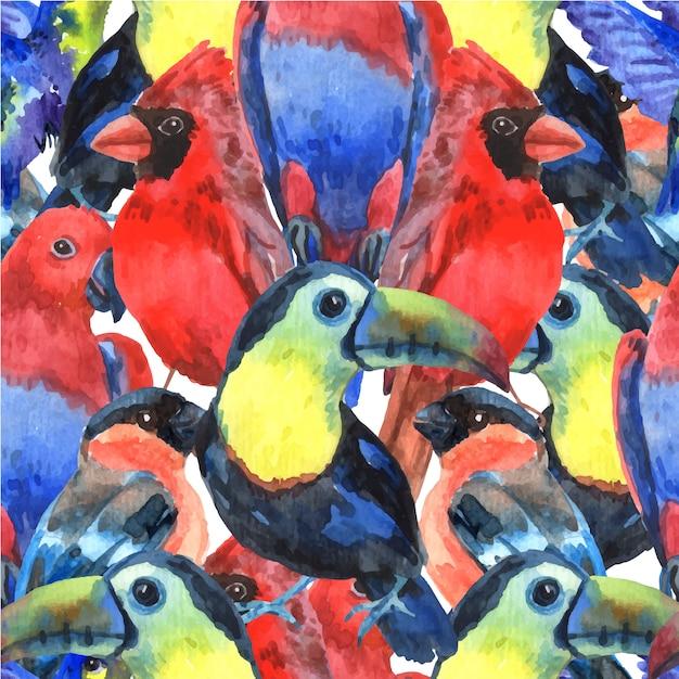 Nahtloses muster der bunten zusammensetzung der tropischen vögel für siebdruck mit papageien Kostenlosen Vektoren