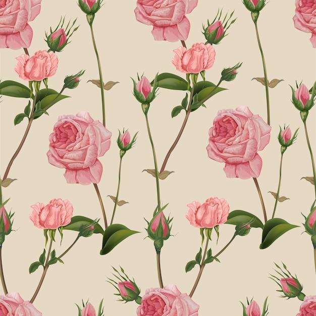 Nahtloses muster der rosafarbenen rose, retrostil Premium Vektoren