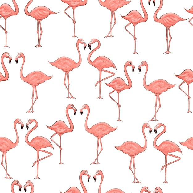 Nahtloses muster des rosa flamingos der karikatur auf weiß Premium Vektoren