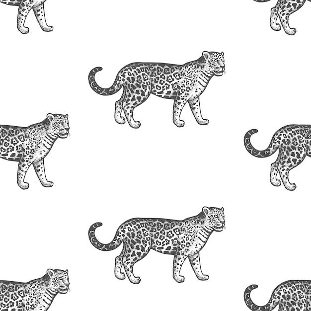 Nahtloses muster mit jaguar. Premium Vektoren