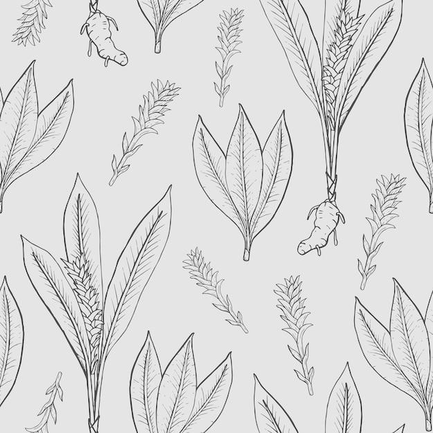 Nahtloses muster mit kurkuma. medizinische botanische pflanze, wurzel, blätter. hand gezeichnete schwarz-weiß-textur. Premium Vektoren