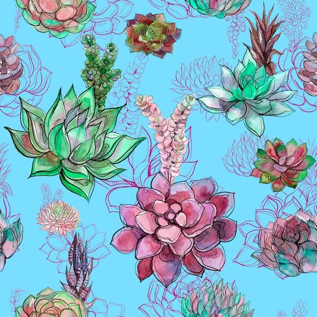 Nahtloses muster mit succulents auf blau Premium Vektoren