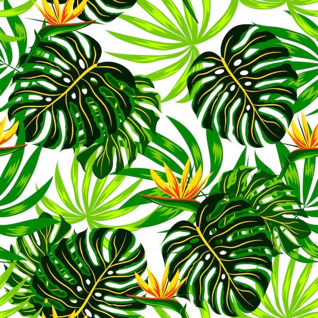Nahtloses sommermuster mit tropischen pflanzen und blumen Premium Vektoren