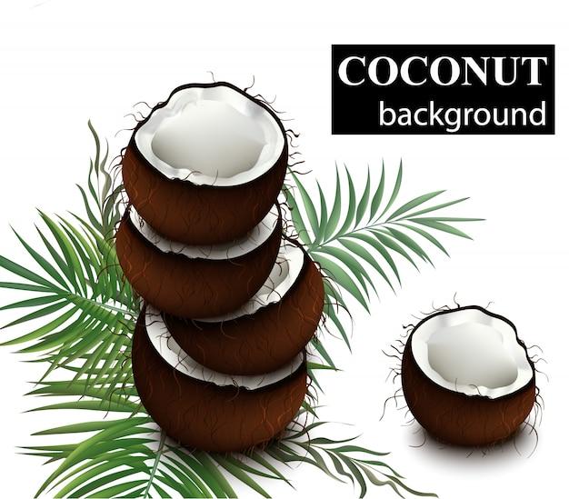 Natürliche frische kokosnussillustration Premium Vektoren