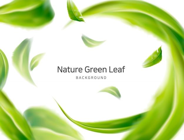 Natur, saubere luftfederblätter Premium Vektoren