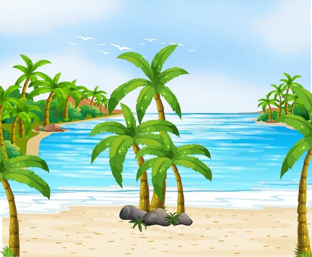 Naturszene mit kokospalmen am strand Kostenlosen Vektoren