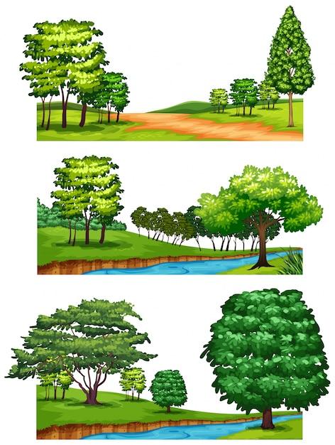 Naturszenen mit bäumen und flüssen Kostenlosen Vektoren