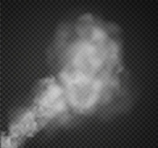 Nebel oder rauch isoliert transparenten spezialeffekt. weiße trübung Premium Vektoren