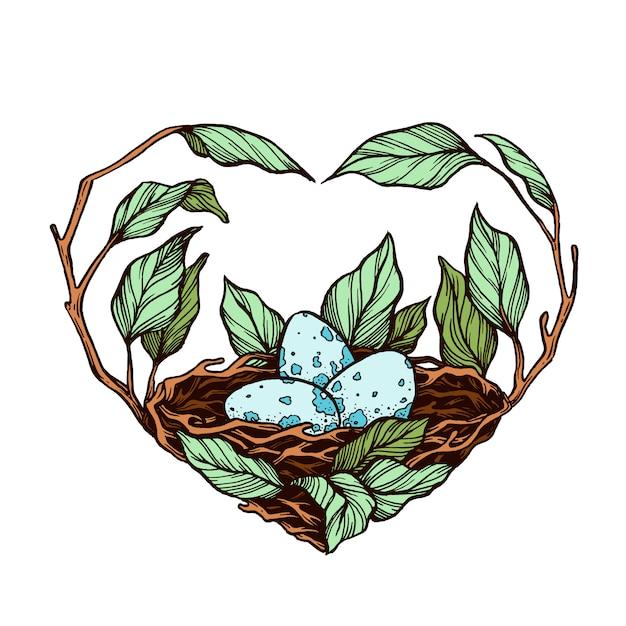 Nest auf einer gezeichneten illustration der niederlassung hand. Premium Vektoren