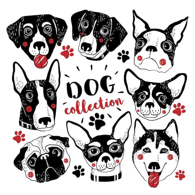 Nette hand gezeichnete hunde sammlung Premium Vektoren