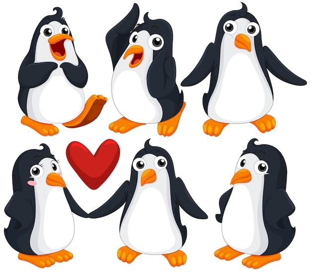 Nette pinguine in verschiedenen posen illustration Kostenlosen Vektoren