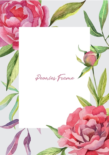 Nette rahmenschablone mit pfingstrosenblumen und -knospen Premium Vektoren