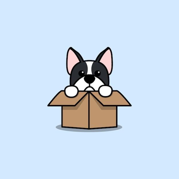 Netter boston-terrierhund in der kastenkarikaturikone Premium Vektoren