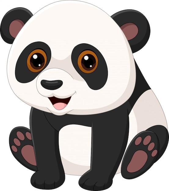 Netter kleiner panda, der lokal auf weißem hintergrund sitzt Premium Vektoren