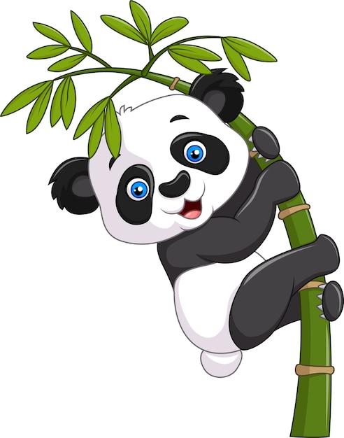 Netter lustiger babypanda, der am bambus hängt Premium Vektoren