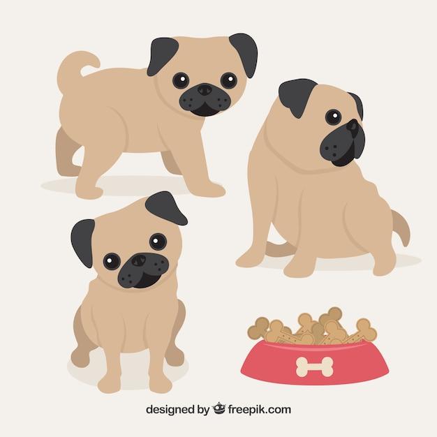 Niedliche Baby Mops Hunde Download Der Kostenlosen Vektor