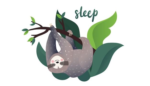 Niedliche faule trägheit, die auf einer niederlassung des tropischen baums schläft. schlaf-typ-schriftzug. cartoon-stil Premium Vektoren