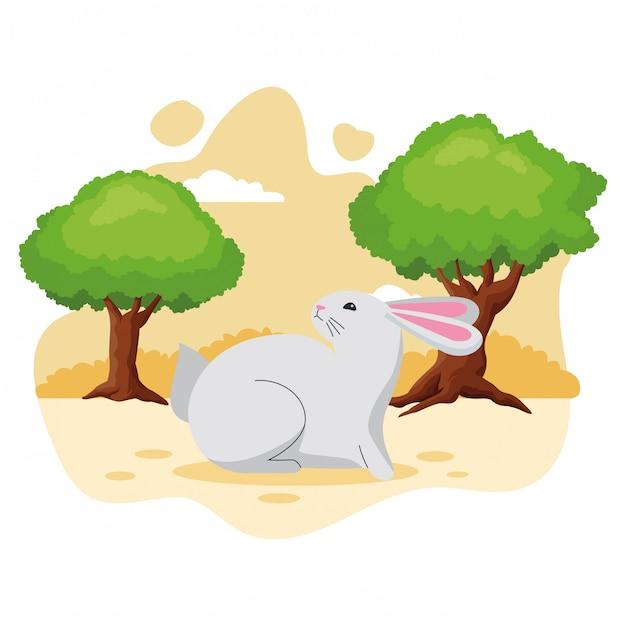 Niedliche kaninchenhaustier-tierkarikatur Premium Vektoren