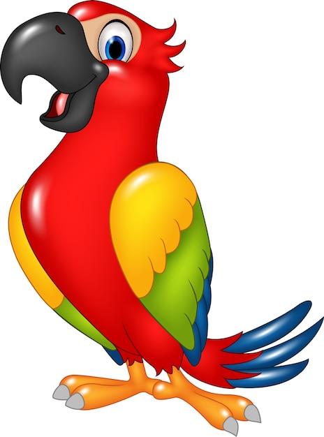 Niedlicher papagei der karikatur Premium Vektoren