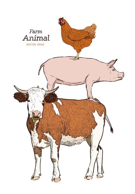 Nutztiere. lokalisierter weinlesevektorsatz. kuh, schwein und huhn Premium Vektoren