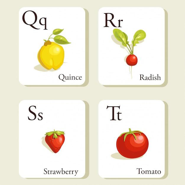 Obst und gemüse alphabet karten Premium Vektoren