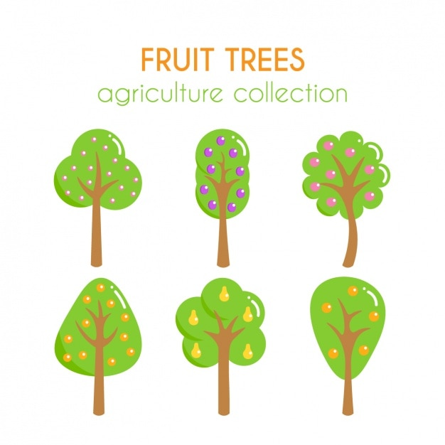Obstbäume sammlung Kostenlosen Vektoren
