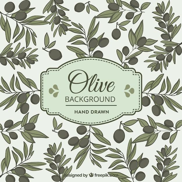 Olive hintergrund in handgezeichneten stil Kostenlosen Vektoren