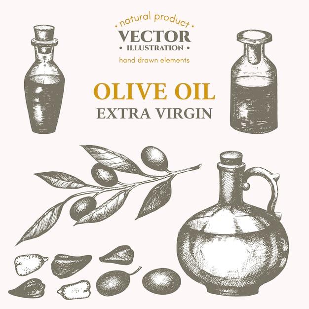 Olivenöl gesetzt Premium Vektoren