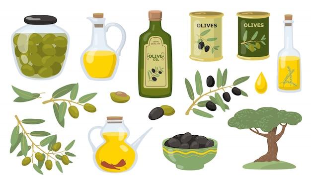 Olivenvektor-illustrationssatz Kostenlosen Vektoren
