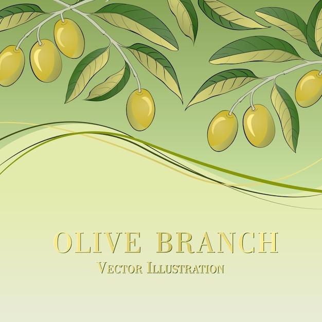 Olivenzweig auf grünem hintergrund Kostenlosen Vektoren
