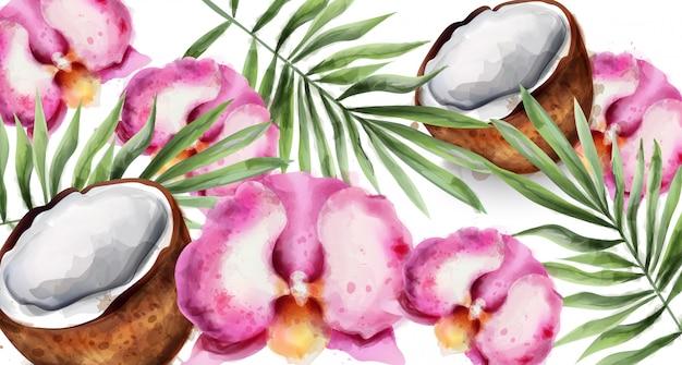Orchideenblumen und kokosnussaquarell Premium Vektoren