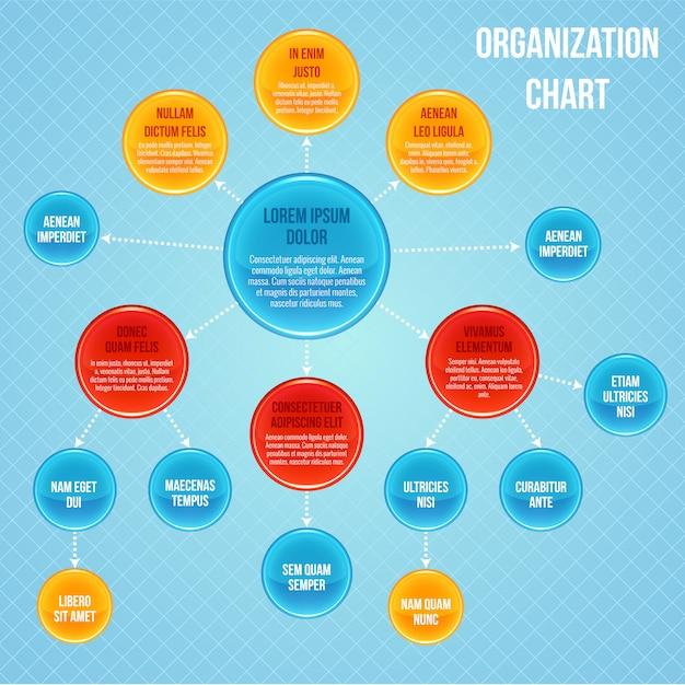 Organigramm infographik vorlage Premium Vektoren