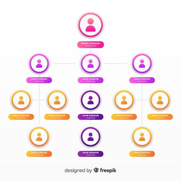 Organigramm Kostenlosen Vektoren