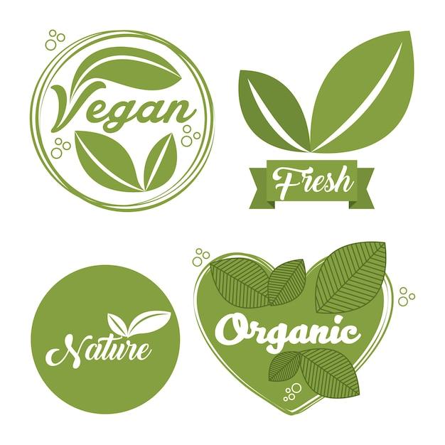 Organisches und natürliches design Premium Vektoren