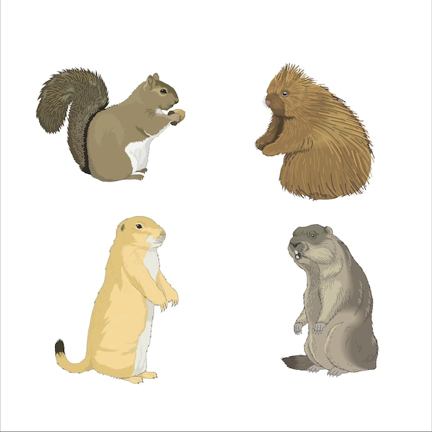 Otter eichhörnchen nagetiere Premium Vektoren