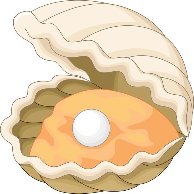 Oyster mit einer perle Premium Vektoren