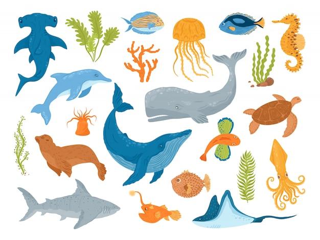 Ozean und meerestiere und fische, satz illustrationen. unterwasserlebewesen und säugetiere, wale, haie, delfine und quallen, schildkröten, seepferdchen. aquarium meerestiere. Premium Vektoren