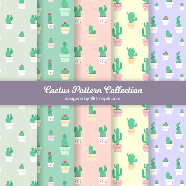 Packung kaktusmuster in flachem design Kostenlosen Vektoren