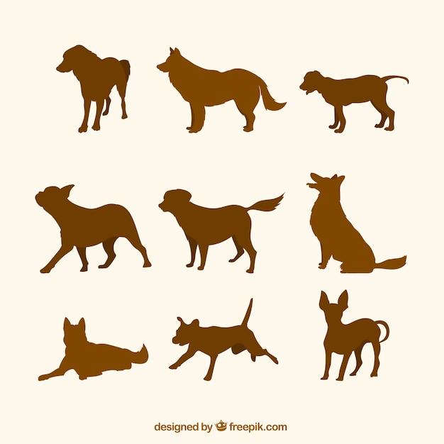 Packung mit braunen silhouetten von hunden Kostenlosen Vektoren