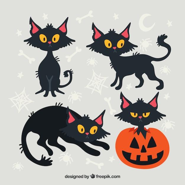 Packung schwarze Katze und Kürbis | Download der kostenlosen Vektor