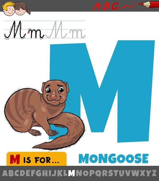 Pädagogische karikaturillustration des buchstabens m vom alphabet mit mungo Premium Vektoren