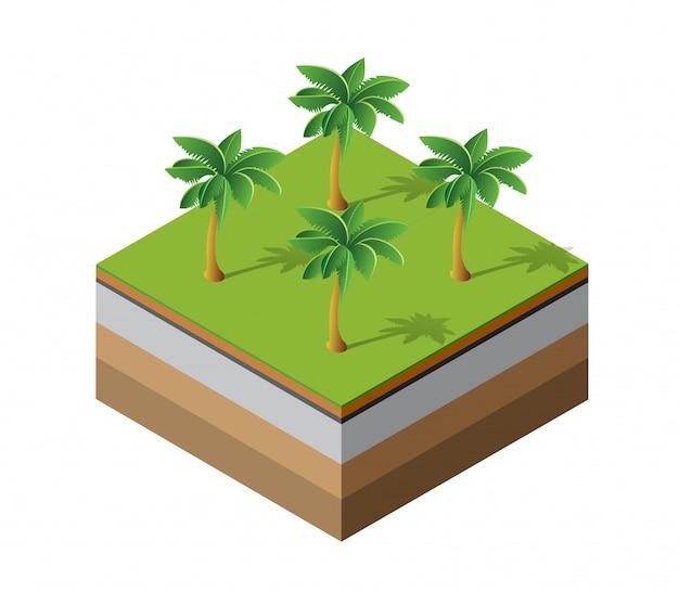 Palmen natürlich Premium Vektoren