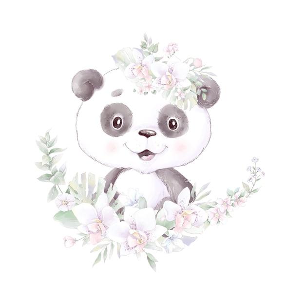 Panda, aquarellillustration isoliert Premium Vektoren
