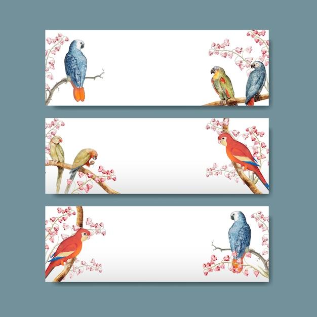 Papagei-titeletikettentwurf Kostenlosen Vektoren