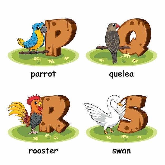 Papagei vogel quelea schwan hahn geflügel holz alphabet Premium Vektoren