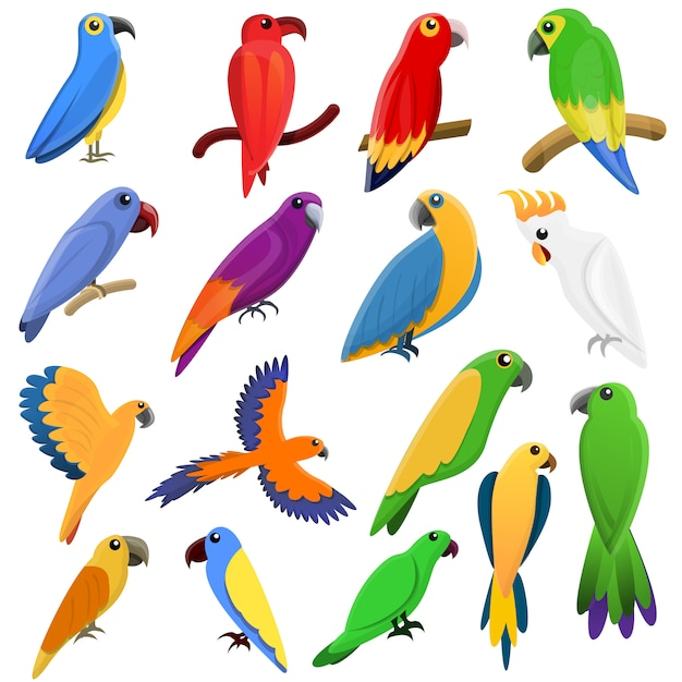 Papageienikonen eingestellt, karikaturart Premium Vektoren