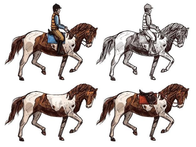 Pferd und reiter, monochrom und farbset, skizze. Premium Vektoren
