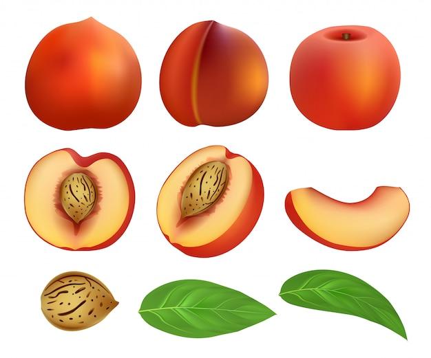 Pfirsichscheiben-fruchtblatt-modellsatz Premium Vektoren